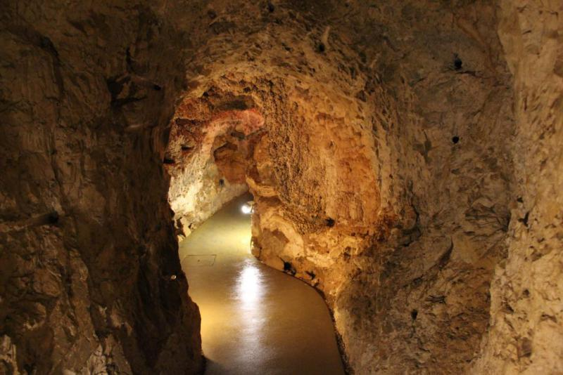 Cave Walk 1